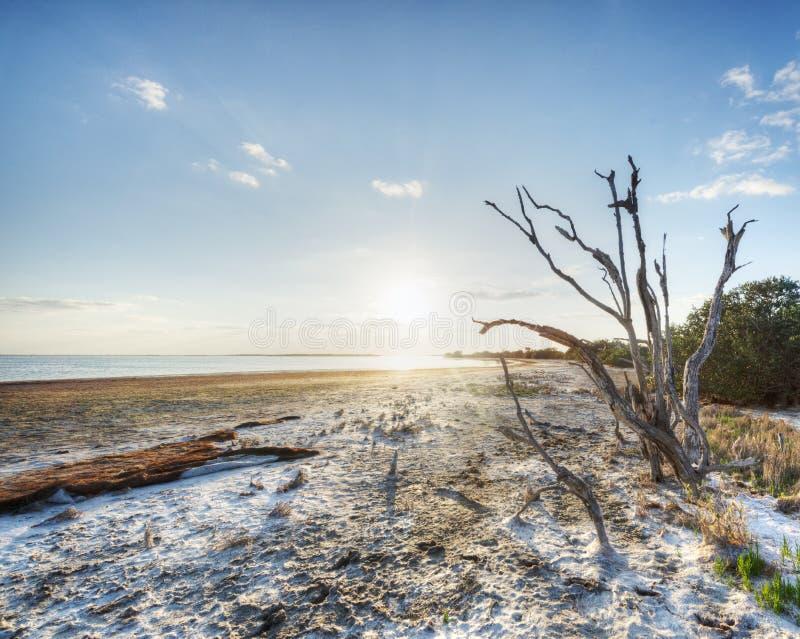Riserva dell'isola di Merritt fotografia stock