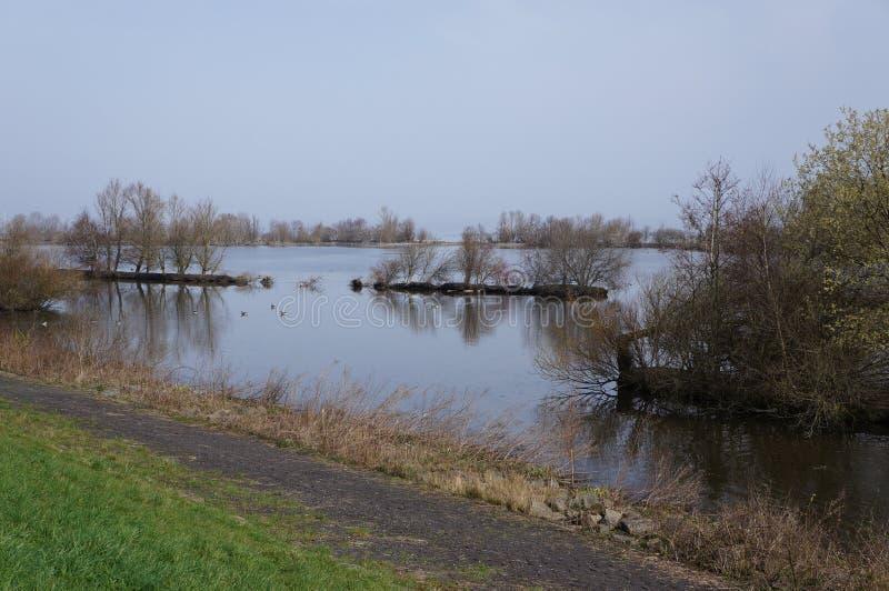 Riserva naturale di Vooroever nei Paesi Bassi immagini stock