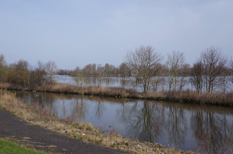 Riserva naturale di Vooroever nei Paesi Bassi immagini stock libere da diritti