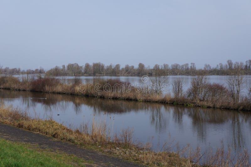 Riserva naturale di Vooroever nei Paesi Bassi fotografia stock