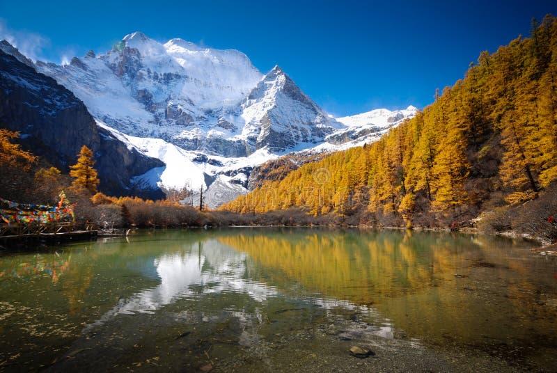 Riserva naturale di Yading Cina fotografia stock
