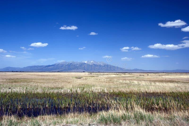 Riserva nazionale di Alamosa in Colorado immagini stock libere da diritti