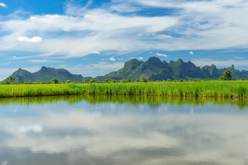 Risfält, sjö och berg på den Sam Roi Yod nationalparken, Pra fotografering för bildbyråer