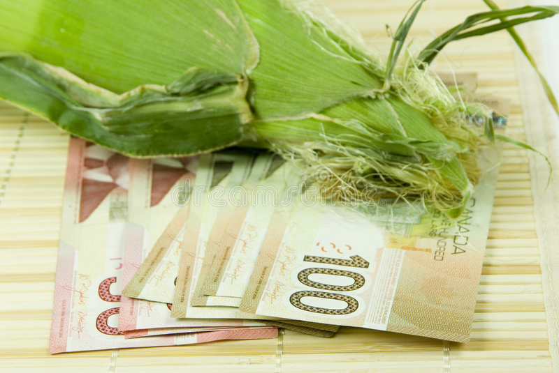 Download Rising cost of food stock image. Image of escalating, corn - 5712803