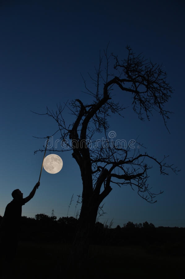 Rising the full moon stock photography