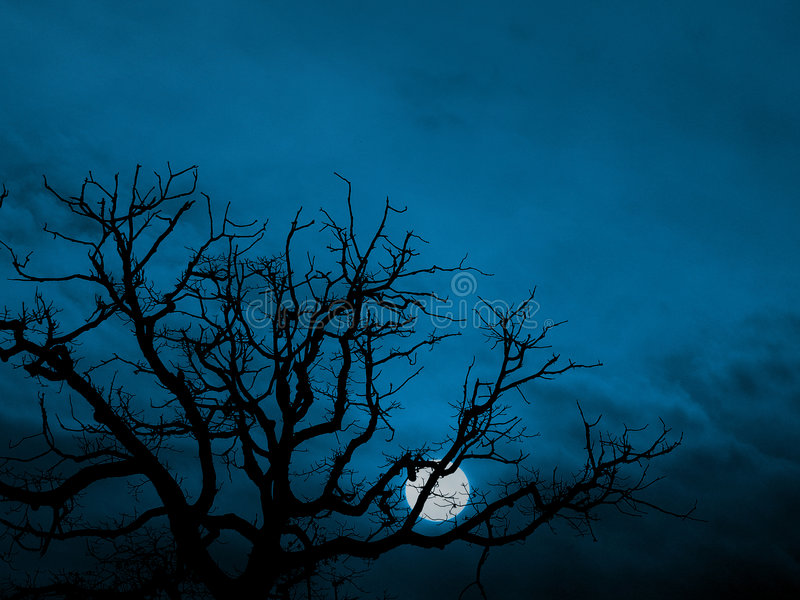 Download Rising moon stock image. Image of shining, color, branches - 636603