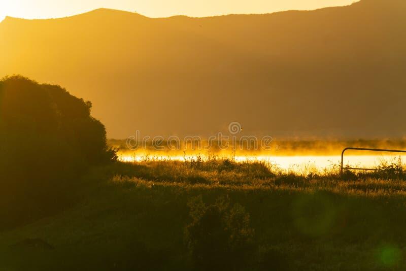 Rising sun back-lights golden landscape. At Wairau Lagoons in Belnheim, New Zealand stock photo