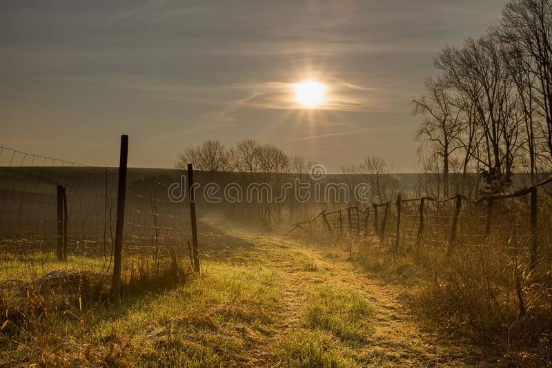 Sun between fences. Rising sun in the fields near the village. Demolished fences along the way royalty free stock image