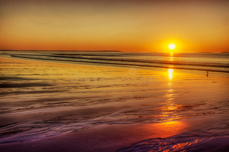Rising sun on gold sands. Early morning sun turns the beach gold in Maine royalty free stock image