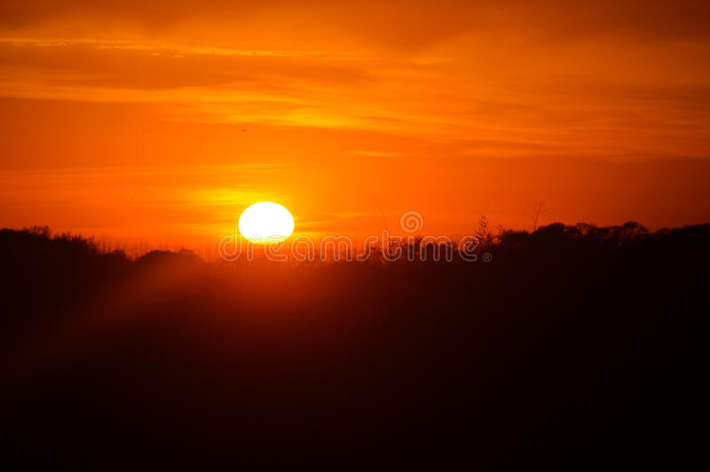 Rising sun. With orange sky in the background stock photos
