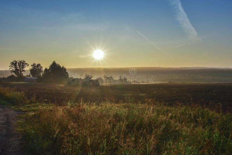Rising sun over the field, sun rays, vegetation and trees, buildings stock photos