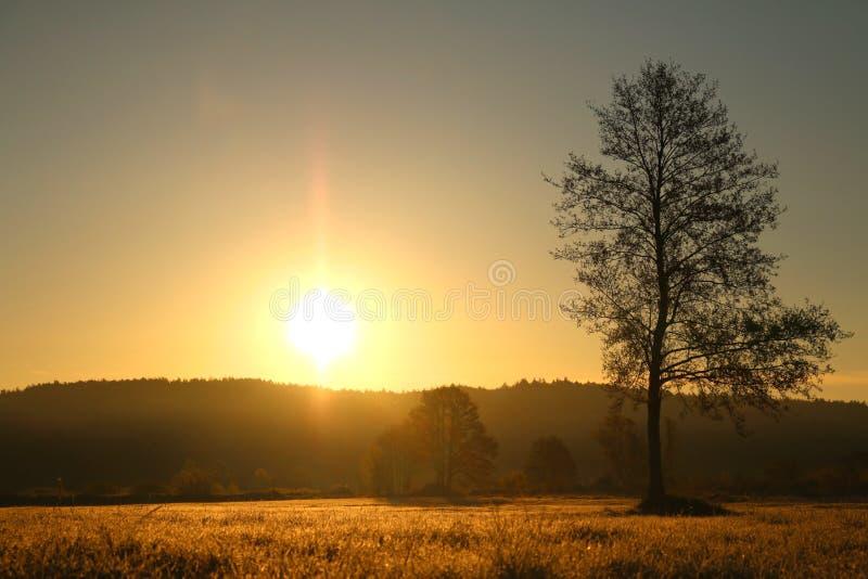 Rising sun in Poland. Rising sun in polish town called Rumia royalty free stock photo