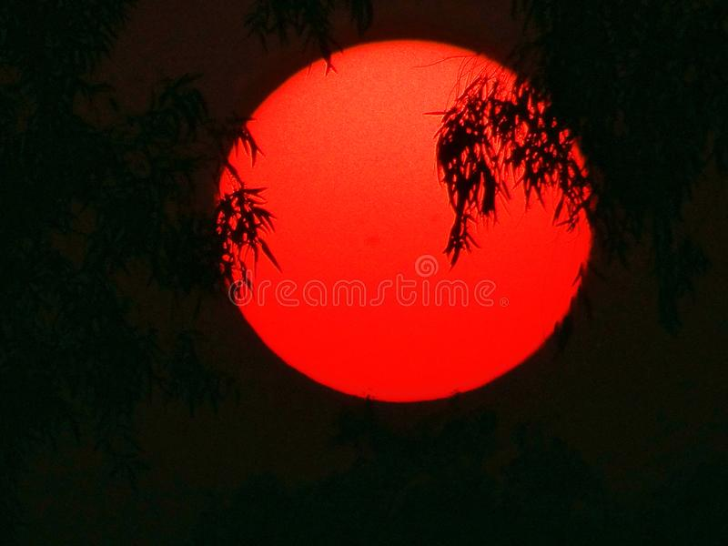 Rising sun. Looks like ring of fire stock images
