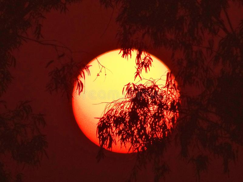 Rising sun. Looks like ring of fire royalty free stock photography