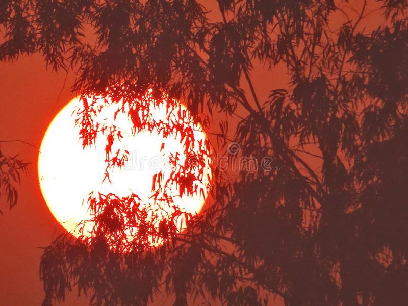 Rising sun. Looks like ring of fire stock image
