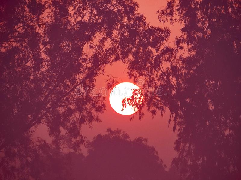 Rising sun. Looks like ring of fire royalty free stock image