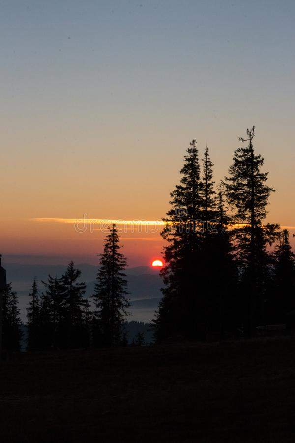 Rising sun with trees silhouettes on clear morning sky background. Mountains in fog at dawn with copy space. Vasness and peace concept. Carpathian mountains in stock images