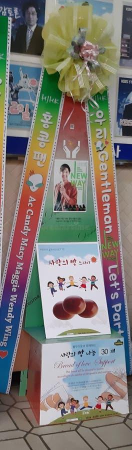 RISKRANSAR PÅ KIM HYUN JOONG NY VÄGkonsert 23/02/19, Busan, Sydkorea arkivbild