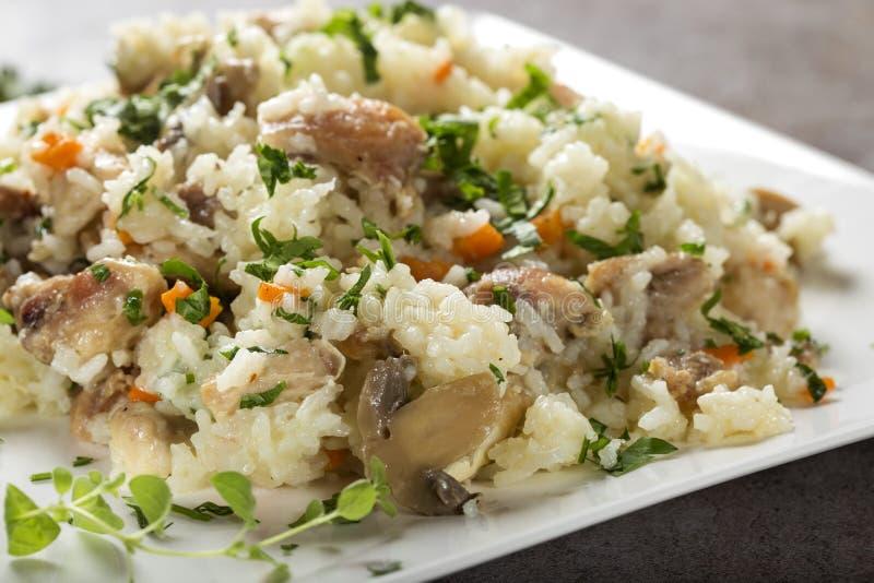 Riso con carne di pollo e funghi, erbe ed altre verdure fotografie stock libere da diritti