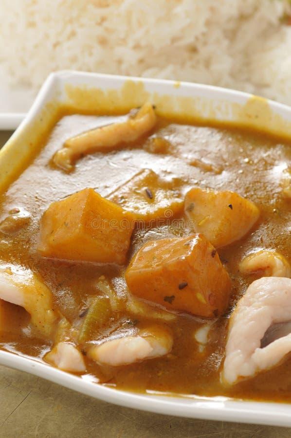 Riso della carne di maiale del curry fotografie stock libere da diritti