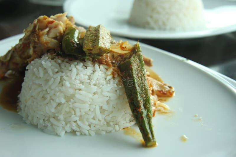 Riso di curry dei pesci immagine stock