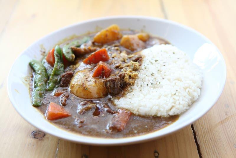 Riso di curry fotografia stock libera da diritti