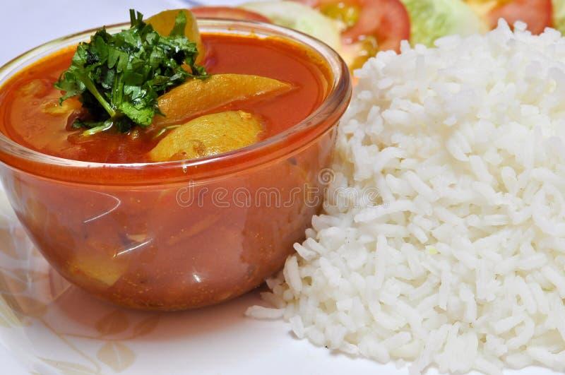 Riso e curry immagini stock
