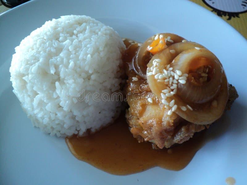 riso e salsa del pollo della cipolla immagine stock libera da diritti