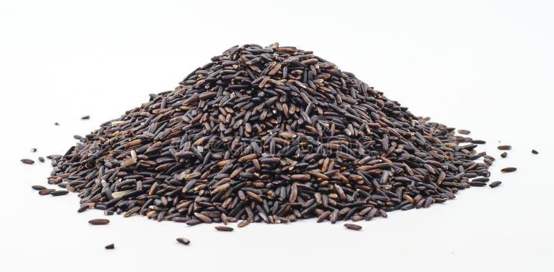 Riso nero del gelsomino (bacca del riso) immagine stock