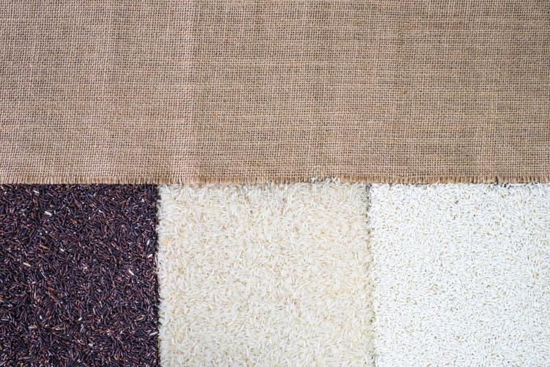 Riso organico, riso misto, riso bianco del gelsomino, bacca del riso, riso glutinoso sui precedenti di legno rustici immagine stock libera da diritti