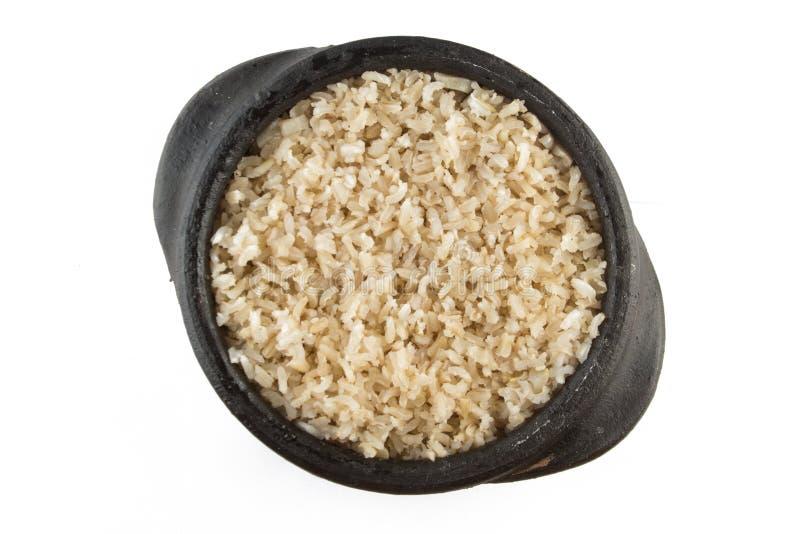 Riso sbramato dell'intero grano cucinato integrale immagine stock libera da diritti