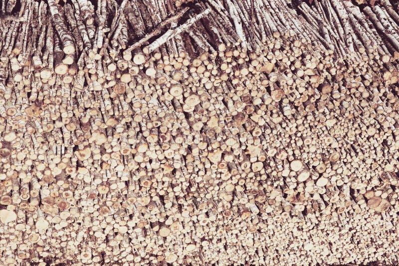 Risorse del legname immagine stock libera da diritti