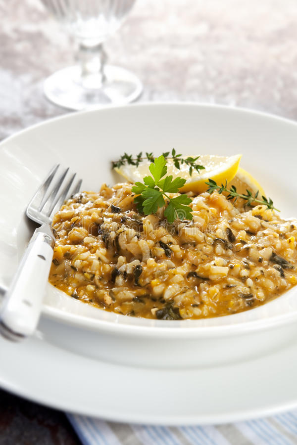 Download Risotto stock image. Image of risotto, gourmet, image - 14857675