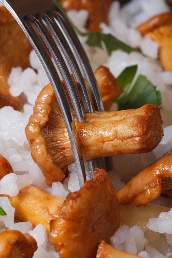 Risotto with chanterelles and fork close up vertical stock image