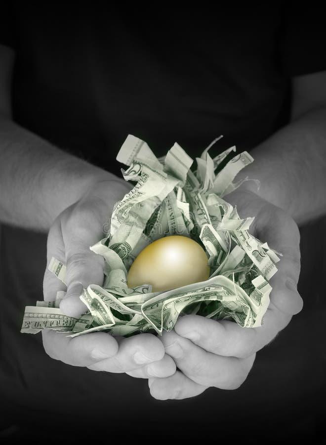 Risparmio dorato dell'uovo di nido dei soldi fotografia stock