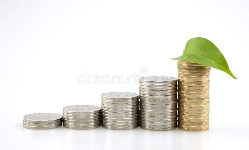 Risparmio, pila aumentante di monete e foglia fotografia stock