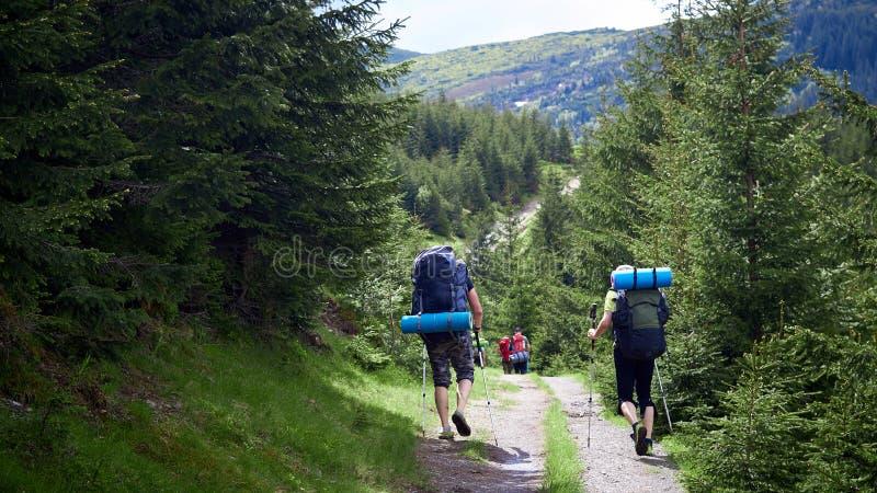 Risquez, voyagez, tourisme, hausse et concept de personnes - groupe d'amis marchant avec des sacs ? dos de dos photos libres de droits
