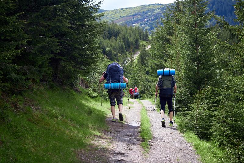 Risquez, voyagez, tourisme, hausse et concept de personnes - groupe d'amis marchant avec des sacs ? dos de dos photographie stock libre de droits