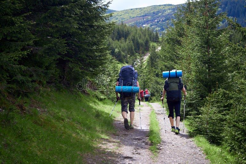 Risquez, voyagez, tourisme, hausse et concept de personnes - groupe d'amis marchant avec des sacs ? dos de dos image libre de droits