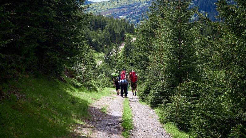 Risquez, voyagez, tourisme, hausse et concept de personnes - groupe d'amis marchant avec des sacs ? dos de dos images stock