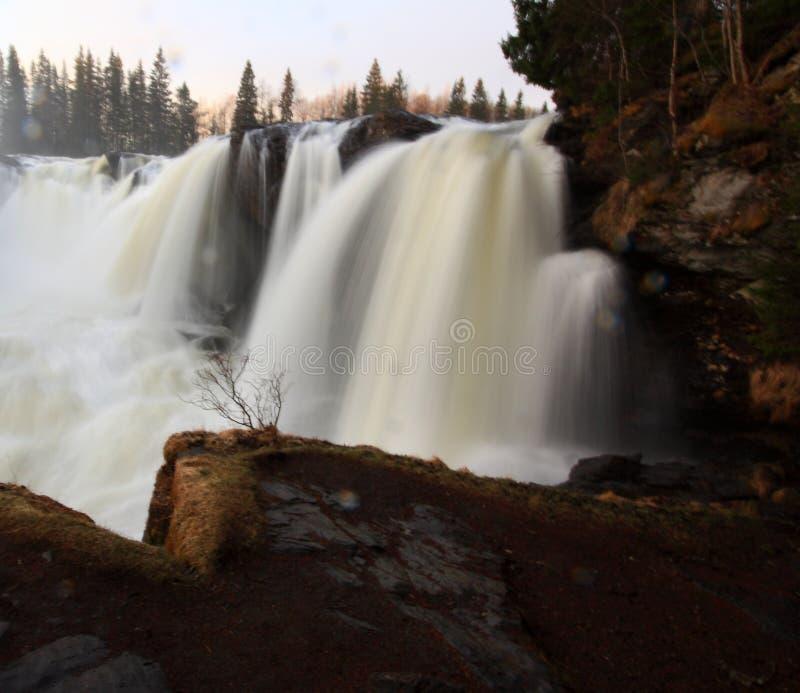 Ristafallet vattenfall royaltyfria bilder