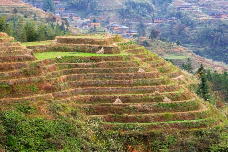 Risterrasser och byn Dahai i Longsheng, Guilin, Kina royaltyfri foto