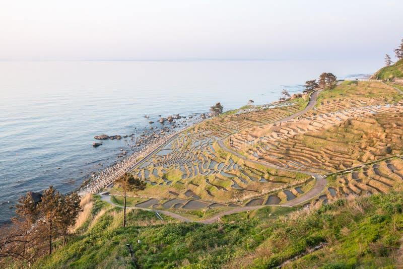 Risterrasser på Shiroyone Senmaida på Japan ` s Noto Hanto seglar utmed kusten fotografering för bildbyråer