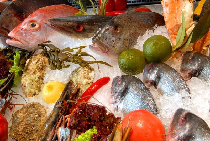 ristorante dei pesci fotografia stock