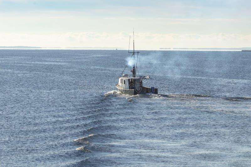 Risveglio dalla barca Mona m. dell'aragosta fotografia stock