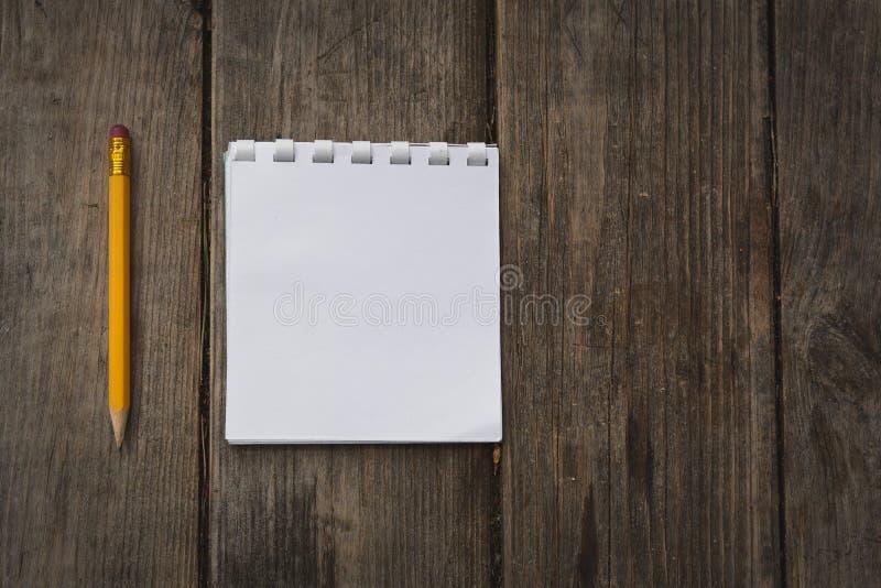 Rita och anteckningsboken arkivfoto