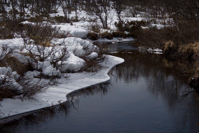 Ritirata della neve fotografia stock libera da diritti