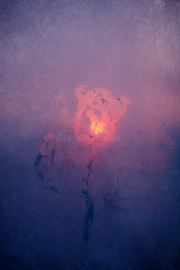 Ritning av en rosblomma i ett frostigt fönster stock illustrationer