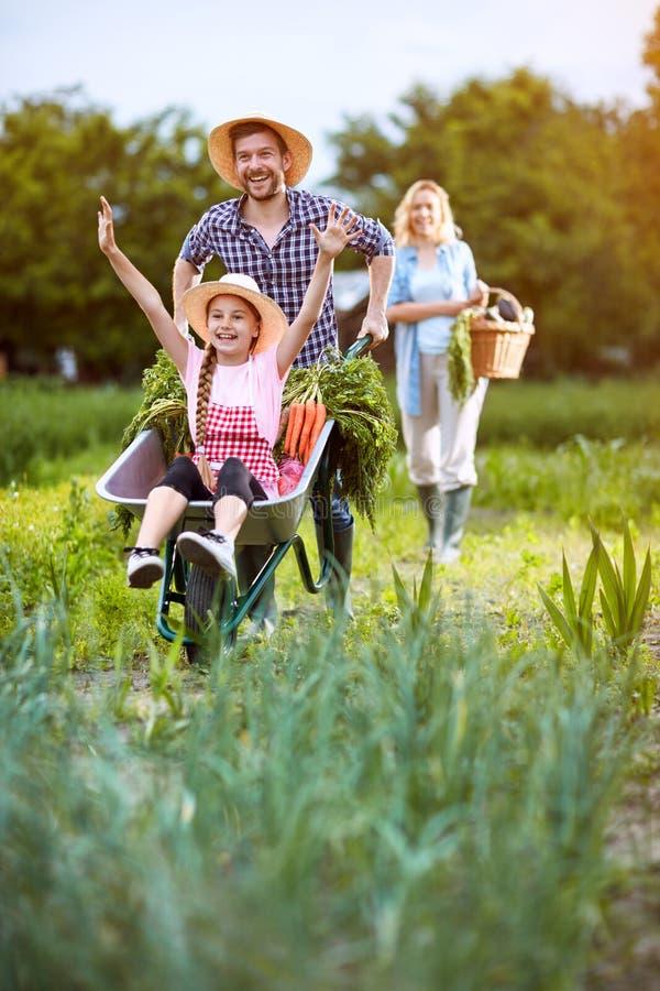 Ritornando dal giardino in carriola fotografia stock