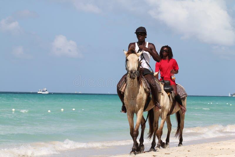 Ritpaard op strand royalty-vrije stock afbeeldingen